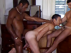 Black and latin gays share white male