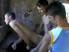 Boys uncover world of sex delights