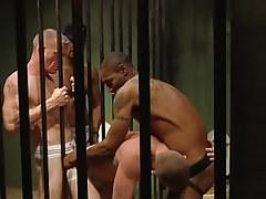 Dark gays fuck white prisoners in all holes