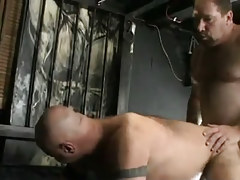Mature hairy gays hard fuck in doggy style